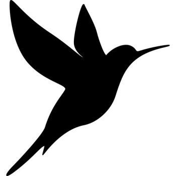Falmatrica - kolibri